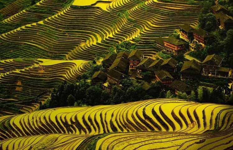 Dazhai, Kina