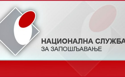 nacionalna sluzba logo