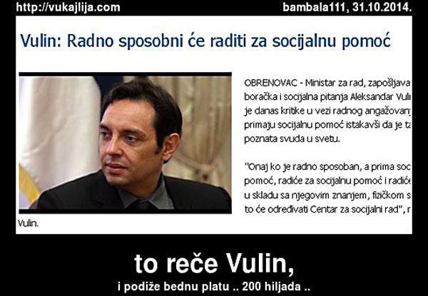 vulin-socijala