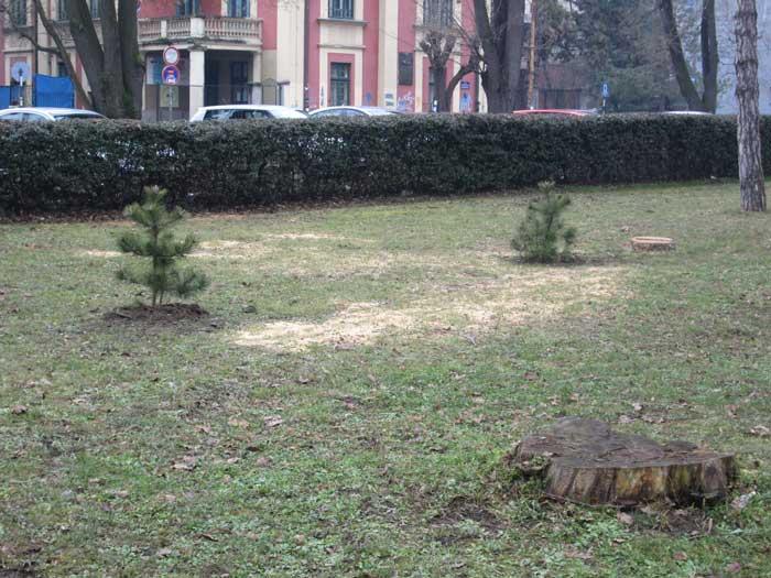 park-1