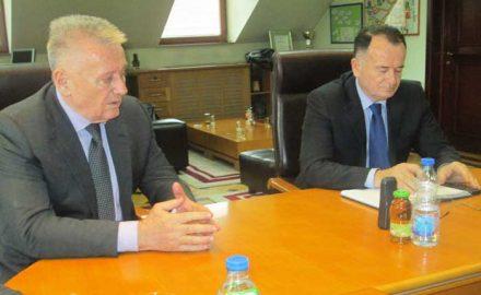 Velimir i Vojislav Ilić
