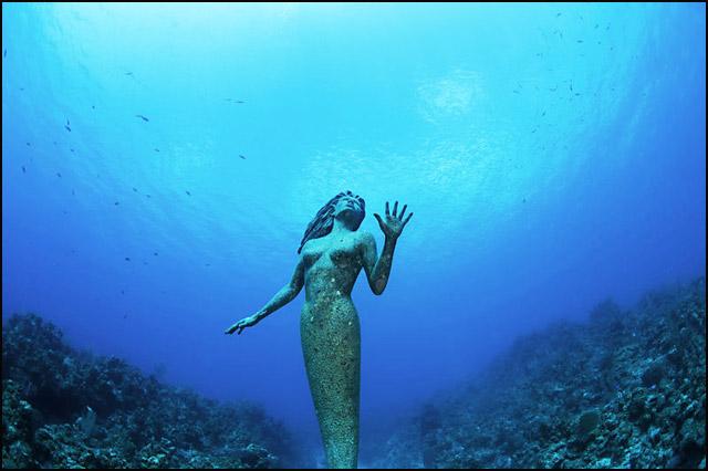voda-272kg-teška-prelepa-sirena