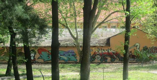 grafiti-5
