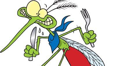 komarac