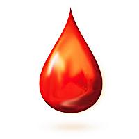 krv-vrtic-2