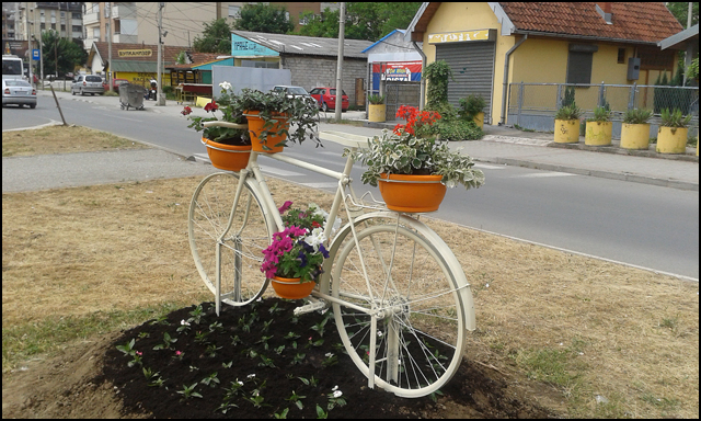 zelenilo-bicikla-1