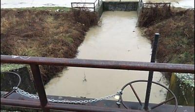 poplavljeni-2