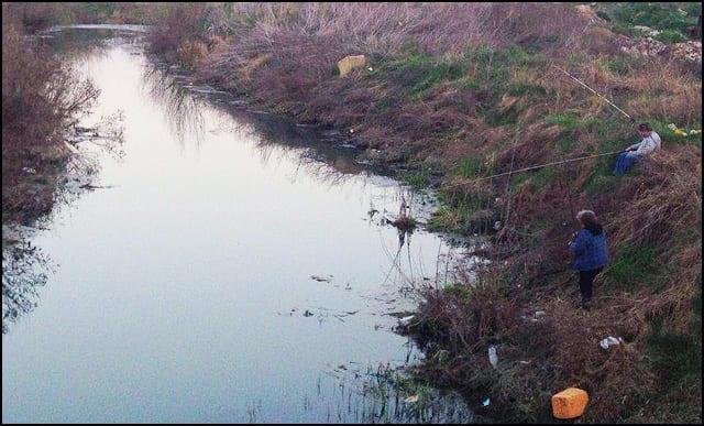 pecanje-Čortanovci