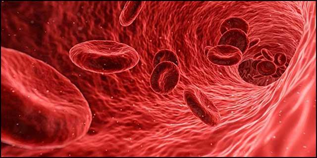 krvna-plazma