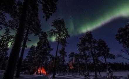 Norveska SEURA
