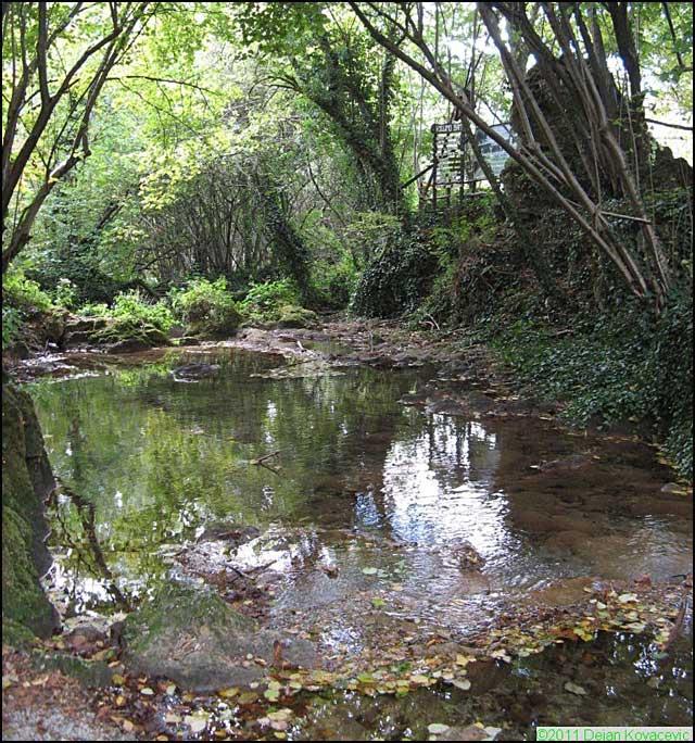 Reka-Cemernica-(Foto-Dejan-Kovačević)