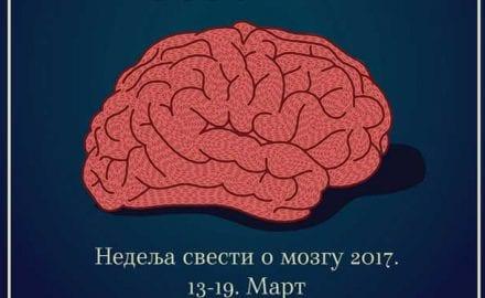 mozak-u-zemlji-snova-2