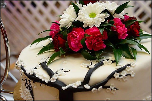 v-torta