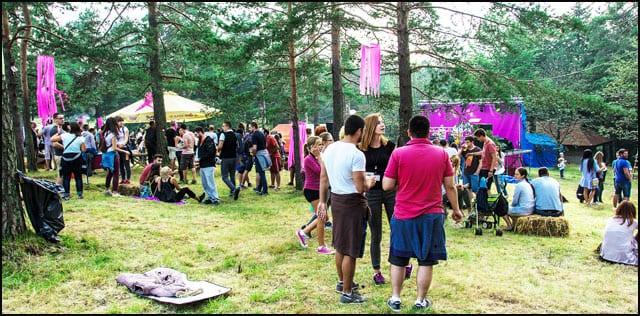 Mountain-Music-Fest-Divcibare-1
