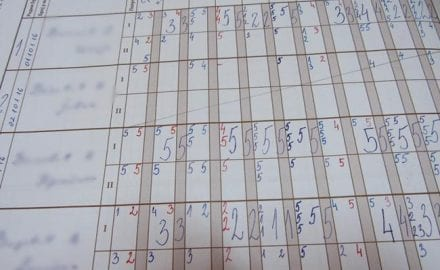 dnevnik skola