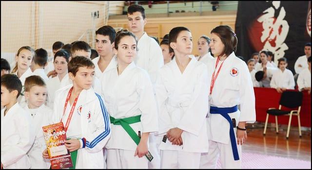 karate-1v