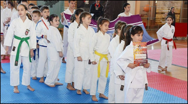 karate-3v