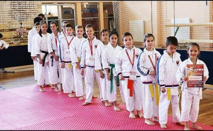 karate-4v