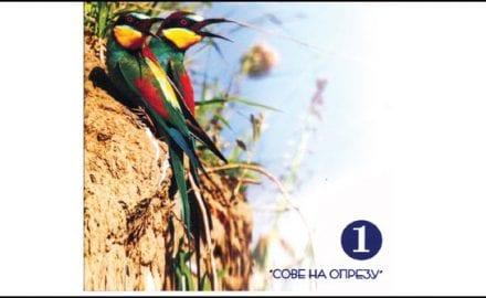 ptice-čačka-2