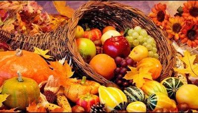 plodovi-viljusa