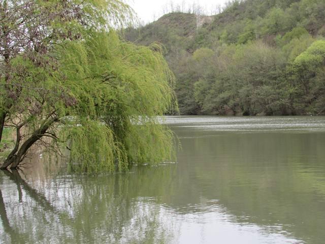 Ovčar Banja