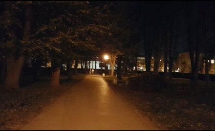 park-7