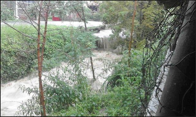 loznička-reka-1