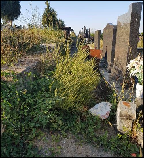 groblje-2