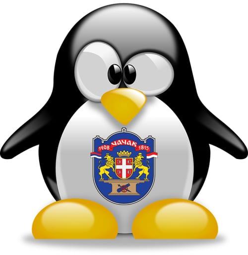 pingvin-1