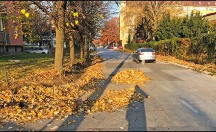 čačanska-jesen