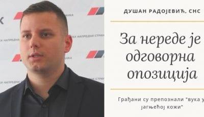 Dusan Radojević