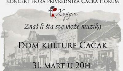 koncert-1a