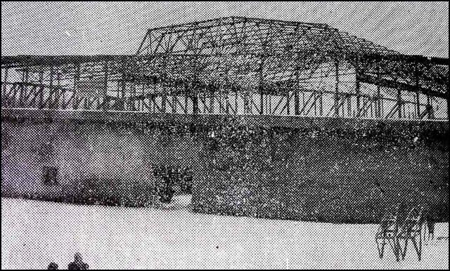 hala-krov