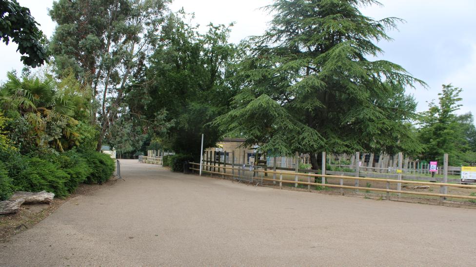 prazan zoološki vrt