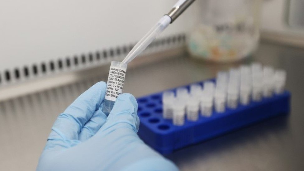 Scientists working at Cobra Biologics, they are working on a potential vaccine for COVID-19