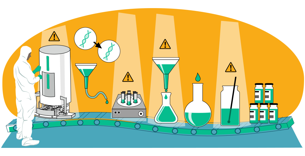 Illustration of the vaccine manufacturing process